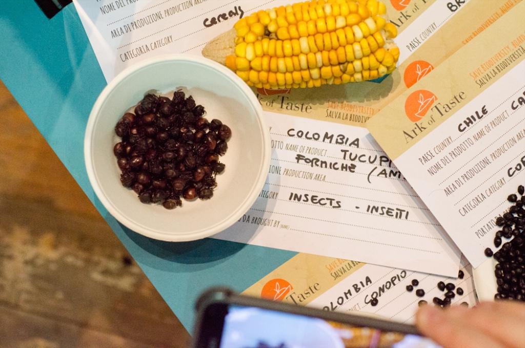 Tot ce vrei sa stii (sau nu) despre insecte comestibile